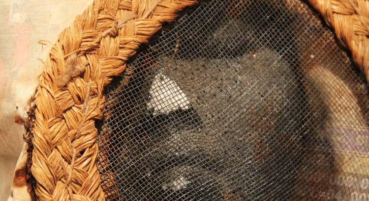 Anti-aging treatments in India. Face behind the grid of a beekeeper statue.