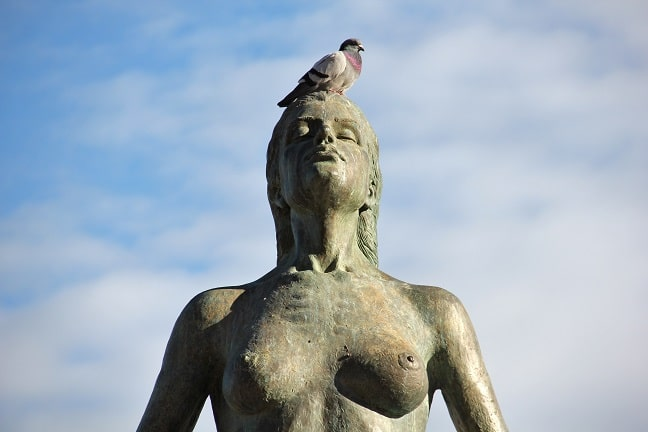 Eternal youth - woman statue with bird on top of the head. Prospects of medical tourism and integrative medicine.